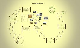 Copy of Shtetl Routes