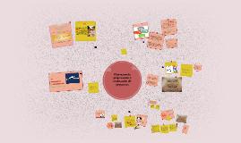 El proceso de preparación y evaluación de proyectos