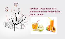 Pectinasas en la eliminacion de turbidez de los jugos frutal