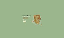 Proyecto amigo virtual - Sofia Dahan (WAL)