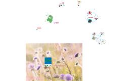 2. Green Keys miljöutbildning med manus