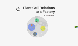 Plant Cell Relations to a Factory