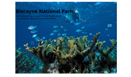 Biscayne National Park Presentation