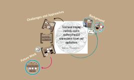Functional Neuroimaging Methods