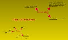 Chpt. 12 Life Science