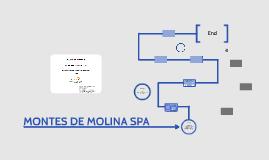 MONTES DE MOLINA SPA