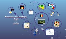 Toeristische bestemmingen: België