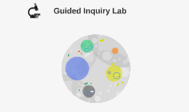 Guided Inquiry Lab