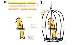 Universidade Lisboa