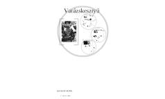 Varazskesztyu original