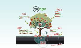 Vaasan Operight-tietoisku 21.3.2014