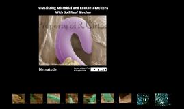 Biochar-microbe-root Microscopy - Robert Cirino UD