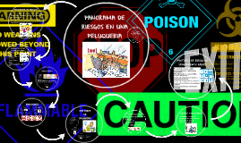 Copy of PANORAMA DE RIESGOS EN UNA PELUQUERIA