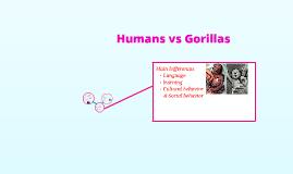 Humans vs Gorillas