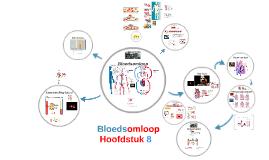 Copy of Bloedsomloop