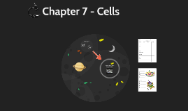 Chapter 7 - Cells