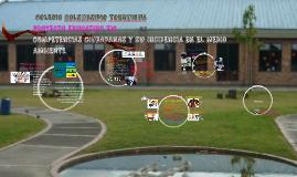 Copy of COMPETENCIAS CIUDADANAS Y SU INCIDENCIA EN EL MEDIO AMBIENTE