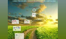 Copy of CARACTERIZACIÓN COMERCIALIZADORES DE HORTALIZAS PROYECTO LOS