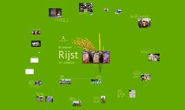 Duurzame rijst uit Indonesië - Biofresh NL