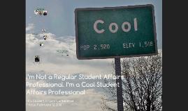 Final: I'm Not a Regular Student Affairs Professional.