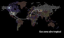 Copy of eco zona afrotropical