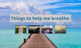Things to help me breathe.