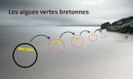 Les algues vertes bretonnes