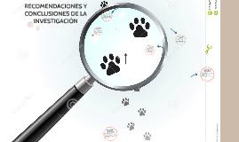 Copy of RECOMENDACIONES Y  CONCLUSIONES DE LA INVESTIGACION