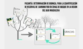 PASANTIA: DETERMINACION DE BIOMASA, PARA LA CUANTIFICACION D