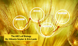 The ABC's of Biology