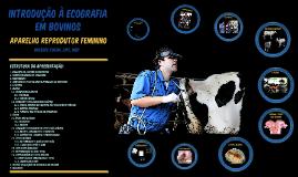 Introdução à Ecografia em Bovinos - Balbino Rocha