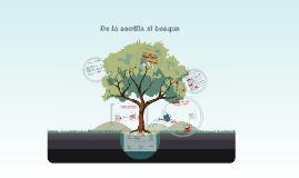 De la semilla al bosque: de AgroRADAR a la CIAN