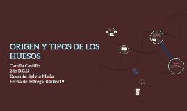 ORIGEN Y TIPOS DE LOS HUESOS