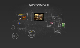 Agriculture Sector III