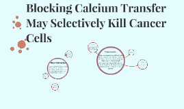 Copy of Blocking Calcium Transfer May Selectively Kill Cancer Cells