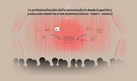 La profesionalización del/la comunicador/a desde la gestión