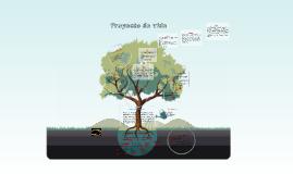 Copy of Diagrama de árbol Proyecto de vida.