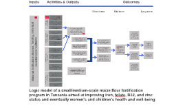 Logic model of small/medium-scale maize flour fortification in Tanzania
