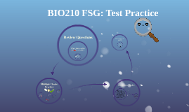 BIO210 FSG: Test Practice