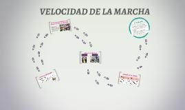 VELOCIDAD DE LA MARCHA