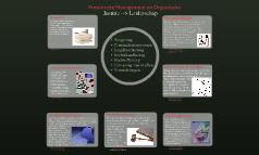 Presentatie Management en Organisatie 1