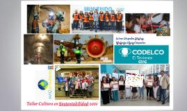 Taller Cultura en Sustentabilidad 2019