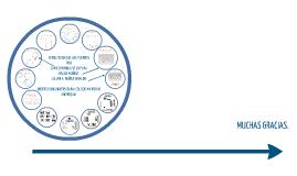 Copy of Generalidades de la prueba y factores asociados