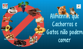 Alimentos que Cachorros e Gatos nao podem comer