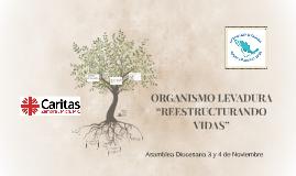ORGANISMO LEVADURA
