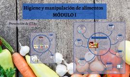 Higiene y Manipulación de Alimentos - MODULO II