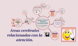 Copy of Areas cerebrales relacionadas con la atención.
