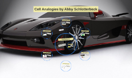 Cell Analogies by Abby Schlotterbeck