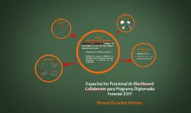 Capacitación Funcional de BC: Programa Diplomado Forestal 2017