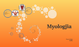 Myologjia
